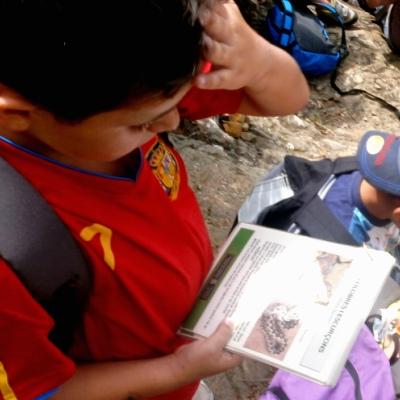 Nen mirant fitxa d'informació de natura